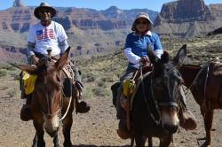 "Mike and Wanda Beasley doing their version of ""City Slickers"" in the Grand Canyon"
